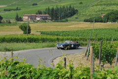 driving-through-wineyards